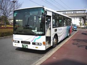 IMGP1196