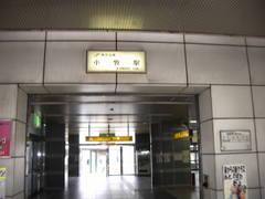 Imgp1184
